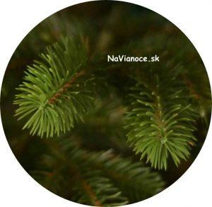 vianočné stromčeky s 3d ihličím